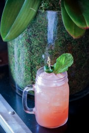 Brew-Jito - Bacardi 8, Beer Syrup, Lime, Mint, Watermelon
