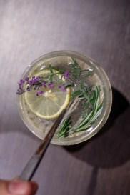 Da Vinci Gin & Tonic
