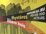 Mystère filière bois