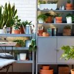 8 Easy Ways To Achieve A Beautiful Balcony Garden Chatelaine