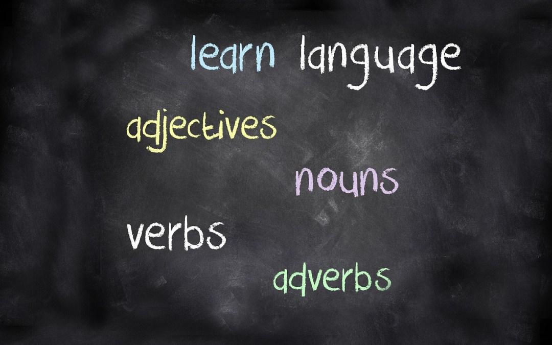 Third person singular – Learn English Grammar