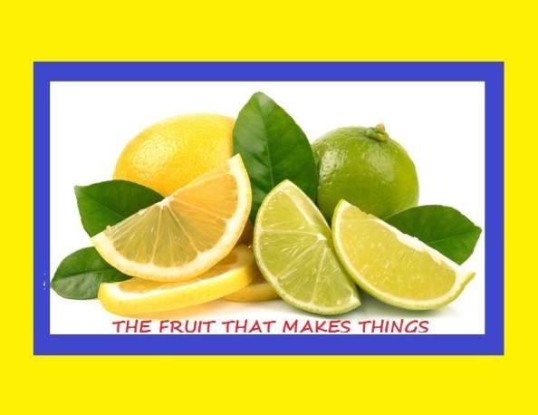 Lemon English Idioms - 127 Expressions