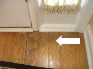 Chattanooga mold inspection in your house