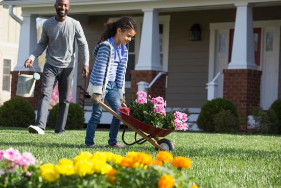 Flowers for landscaping | Chattanooga Home Inspector Chattanooga