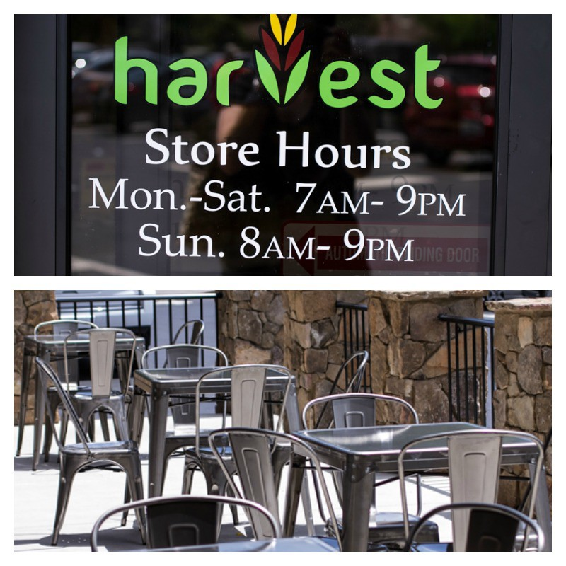 Harvest Grocery | Chattavore