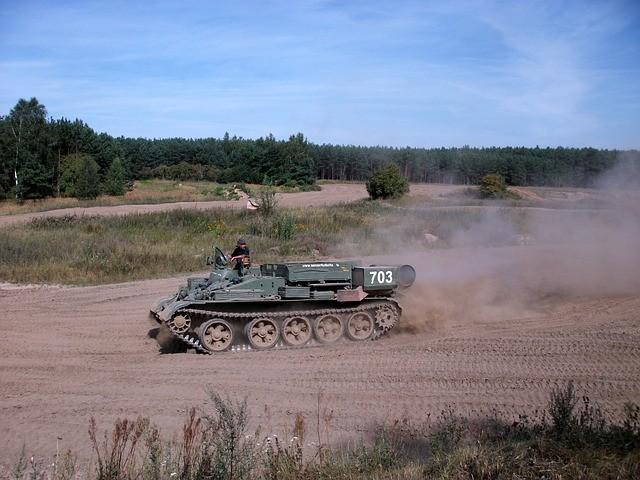 Originelle Männergeschenke - 5 testosterongeladene Ideen - panzer-234506_640
