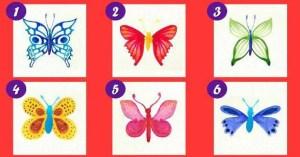 Escolha sua borboleta favorita e descubra seu significado