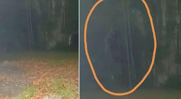 Criatura lendária 'Homem Macaco' fotografada em Cingapura