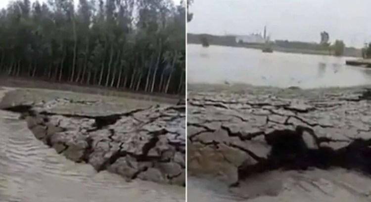 Um vídeo mostra como a terra está crescendo sozinha na Índia.