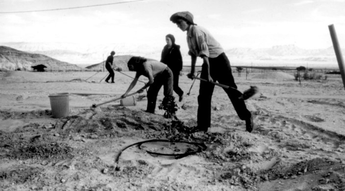 Black and white photo of people working the land on an early kibbutz