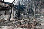 Remembering Life in Shlomo Carlebach's Israeli Moshav, Now Engulfed in Flames