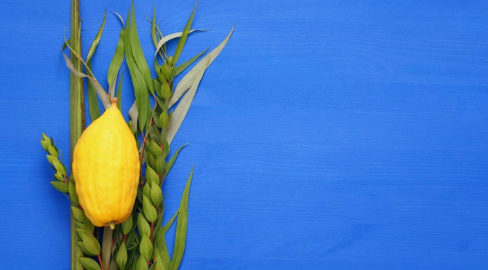 Lulav and etrog against a bright blue background