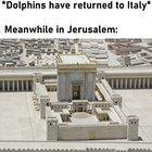 [OC] Meanwhile in Jerusalem...