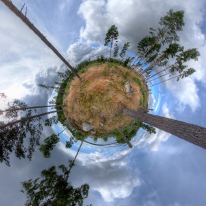 little planet - Wald in Schweden