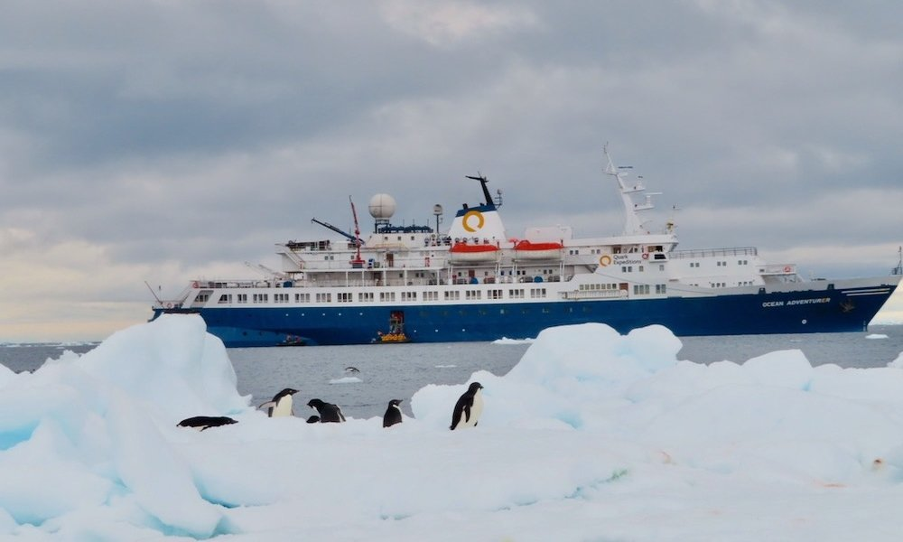 how to get to antarctica: penguins in antarctica