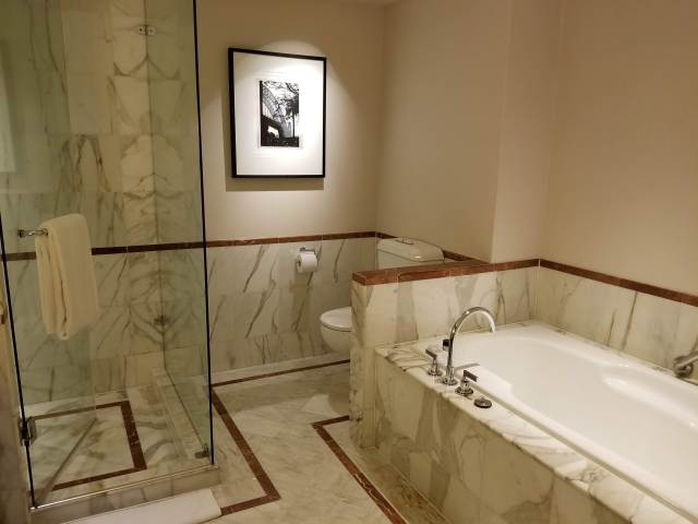 Bathroom: large bathtub and shower area
