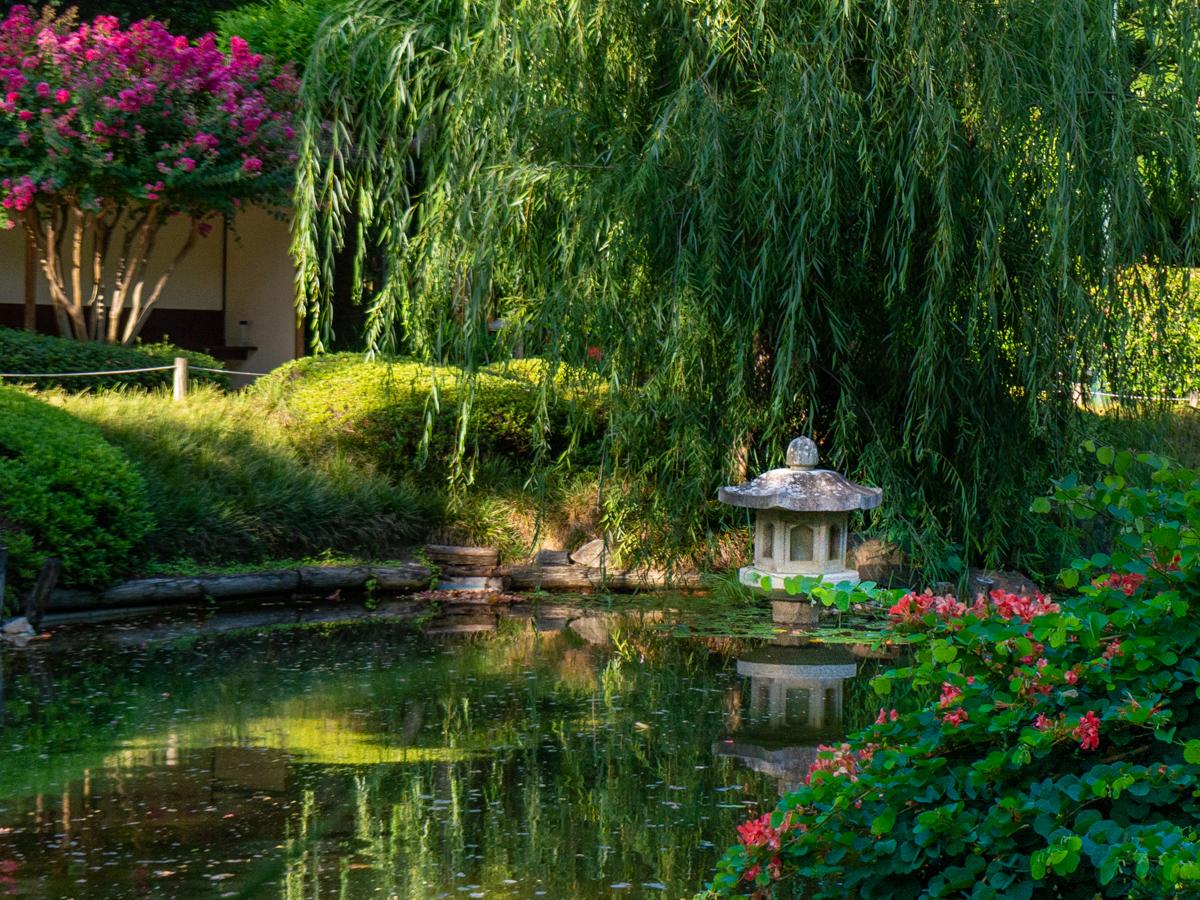 Japanese Garden at Brisbane Botanic Gardens Mount Coot-tha