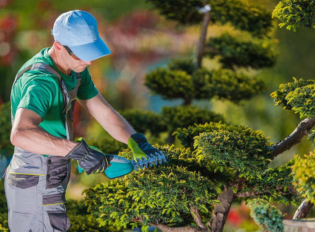 How Much Does A Gardener Cost In 2021 Checkatrade