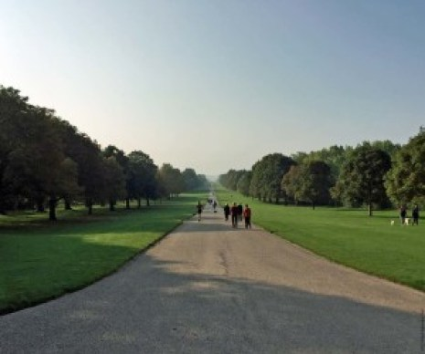 The Long Walk, Windsor Great Park - Windsor, England