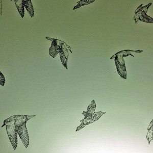 """Put a Bird on It"" (from the IFC show Portlandia) - Bird wallpaper found in a Portland hotel - Portland, Oregon"