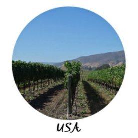 USA Launch Photo - USA