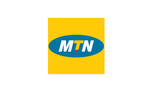 Manager, FinTech Audit at MTN Nigeria
