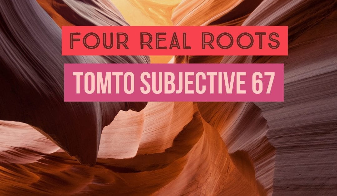 Test of Mathematics Solution Subjective 67 – Four Real Roots