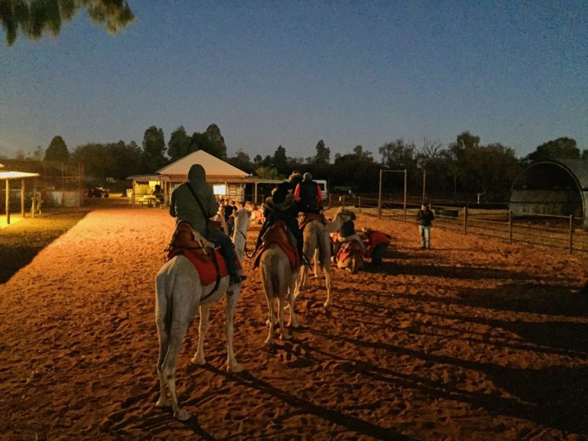 Riding the camel to sunrise route