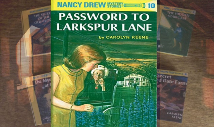 The Password to Larkspur Lane PDF