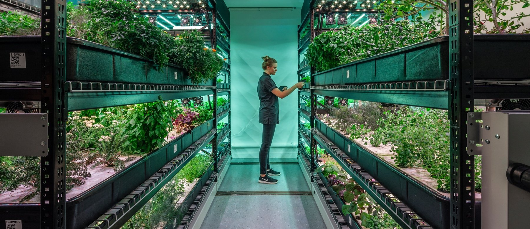 Farm One is the Indoor Farm of the Future