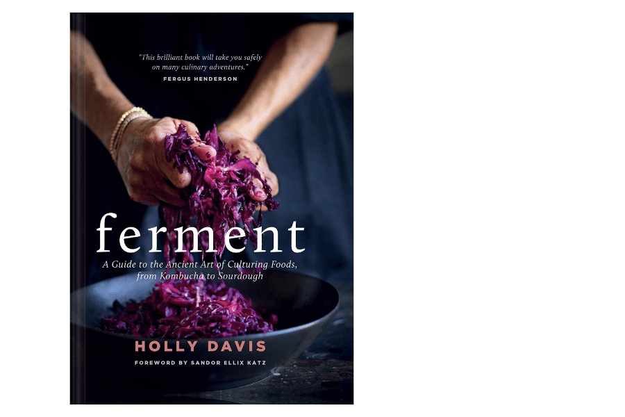 ferment cookbook