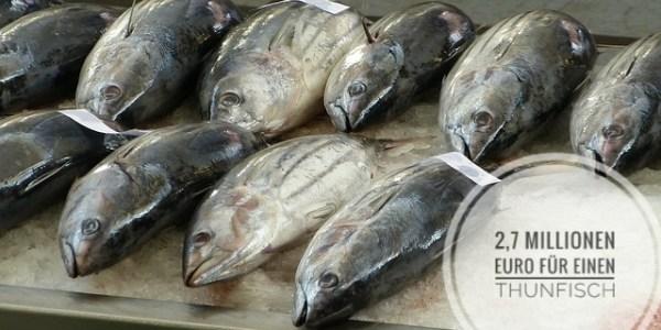 2,7 Millionen Euro für einen Thunfisch