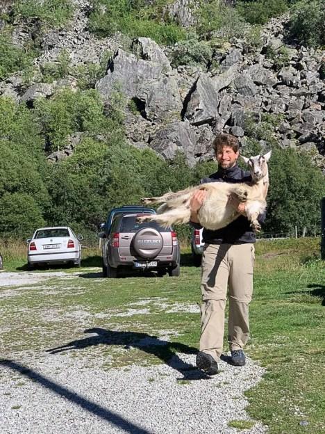 Che il viaggio abbia inizio con la capra a Rallarrosa Stølsysteri durante la Flamsbana
