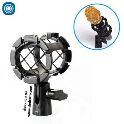 Antichoc microphone