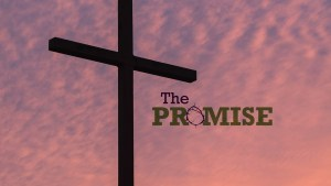 Sermon Series - The Promise