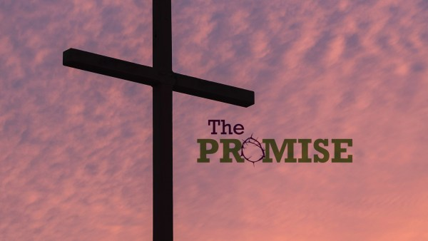 The Promise Purchased You Image