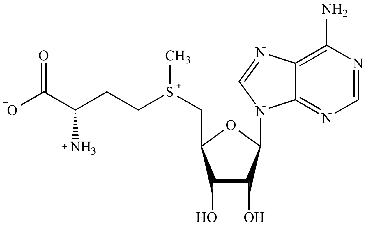 Illustrated Glossary Of Organic Chemistry