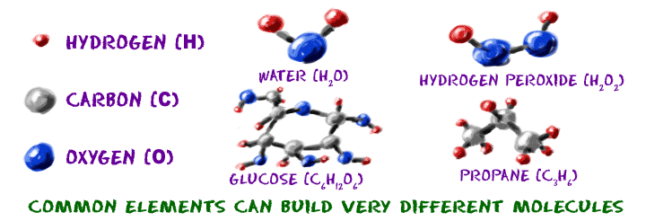 Common elements can build very different molecules.