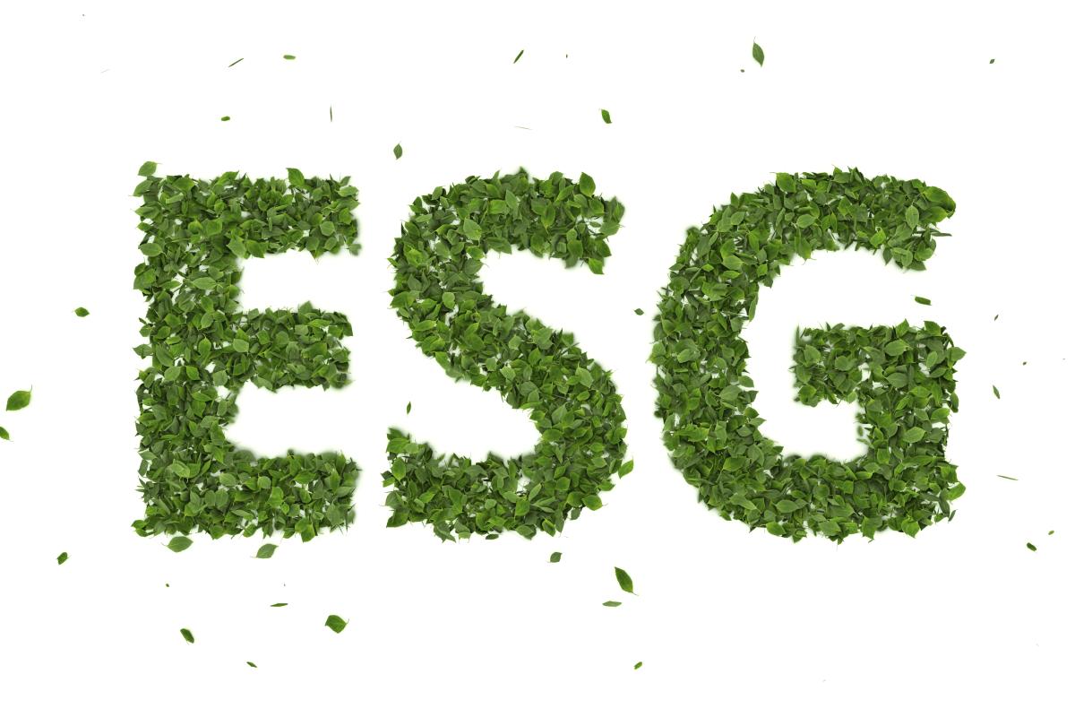 o que e ESG