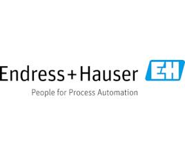Endress+Hauser Ltd