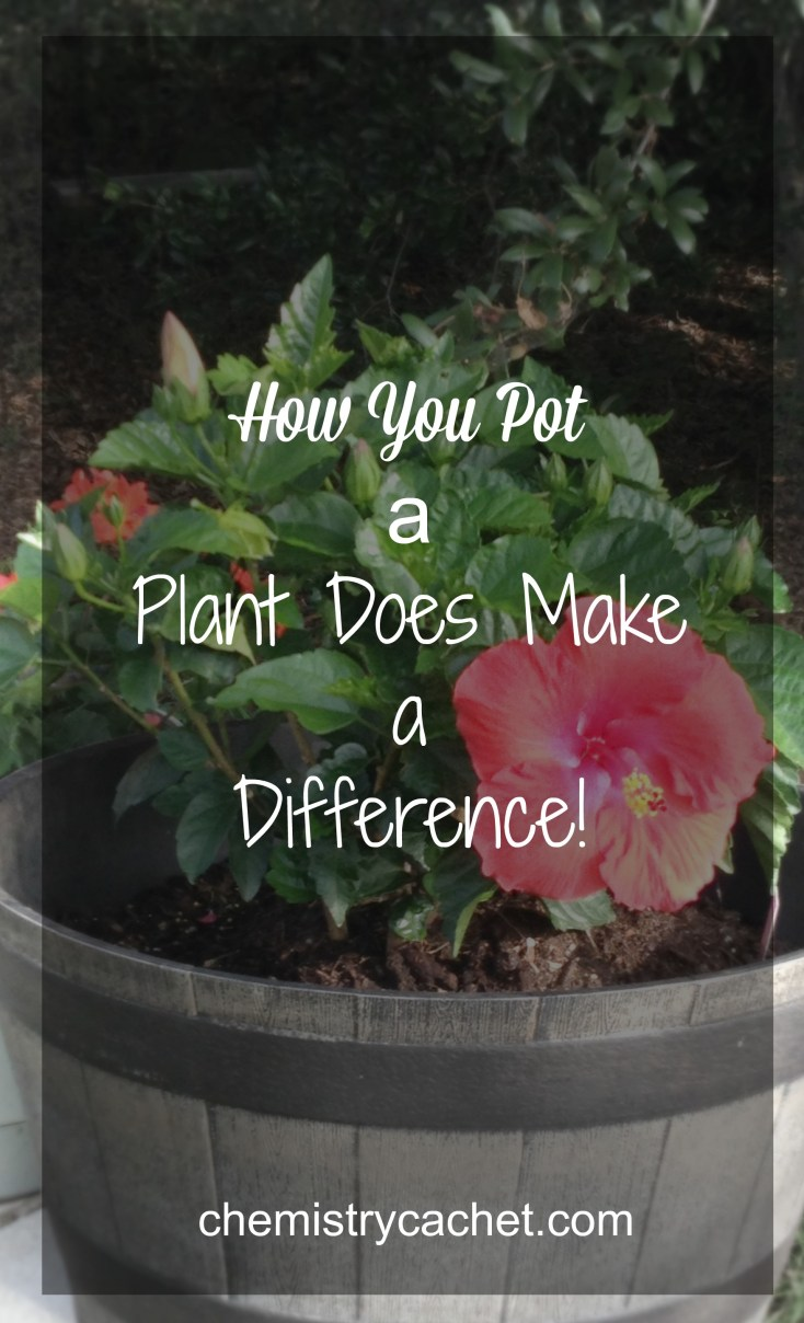 How you pot a plant makes a big difference! chemistrycachet.com