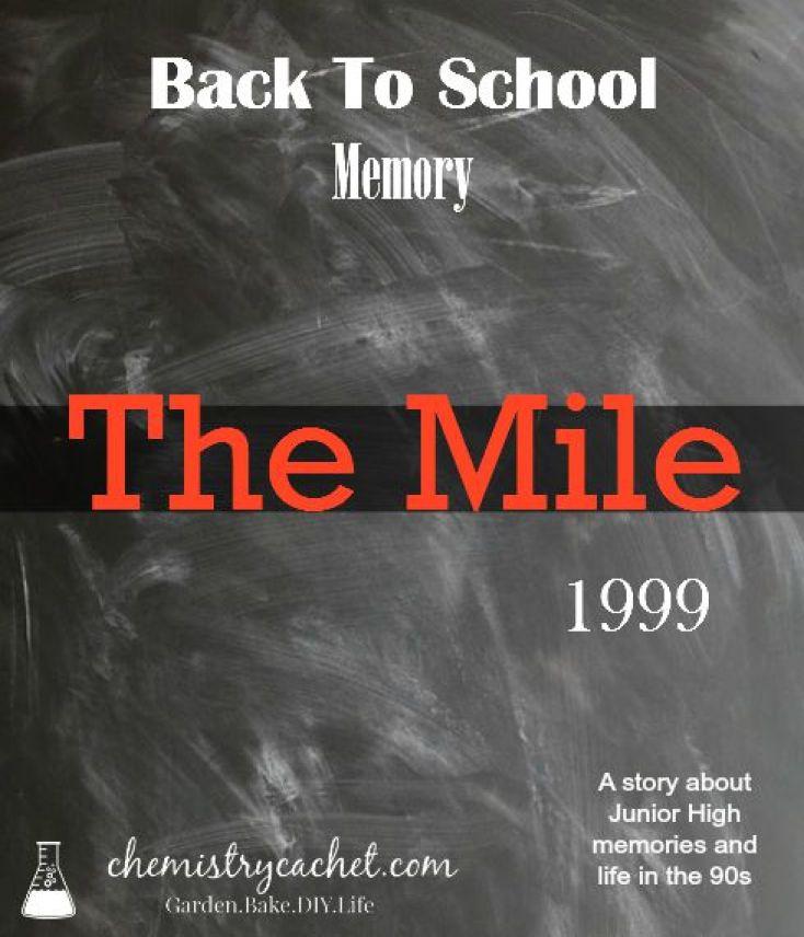 A back to school memory, circa 1999. Junior High life, so simple and sweet! chemistrycachet.com