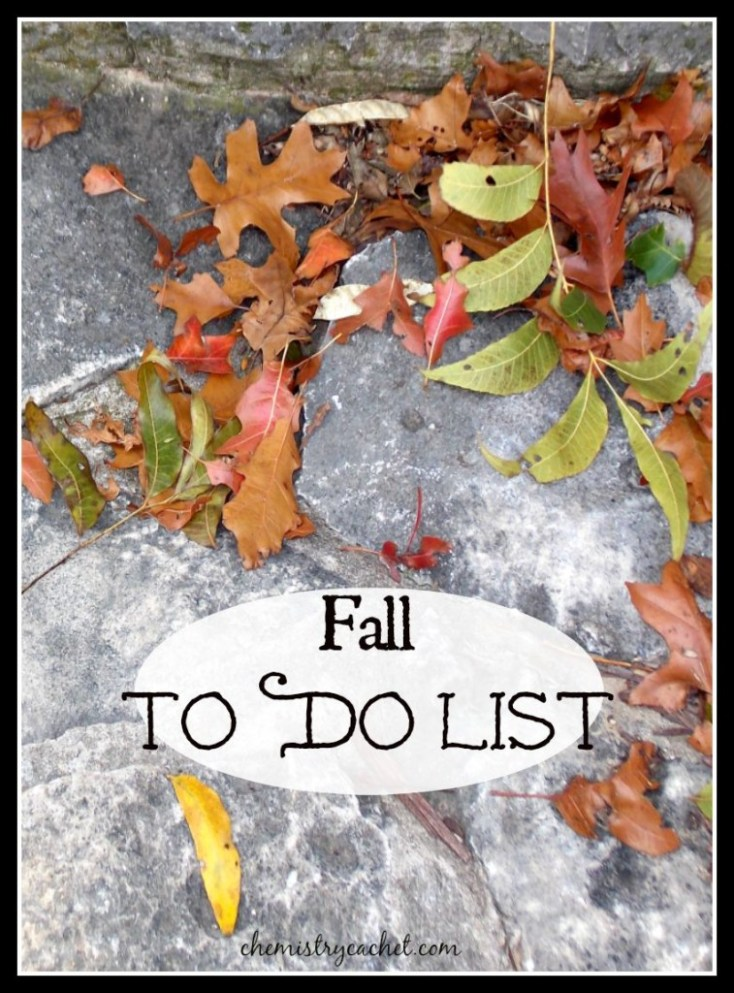 Fall To Do List. Fun ideas for everyone to enjoy this season! chemistrycachet.com