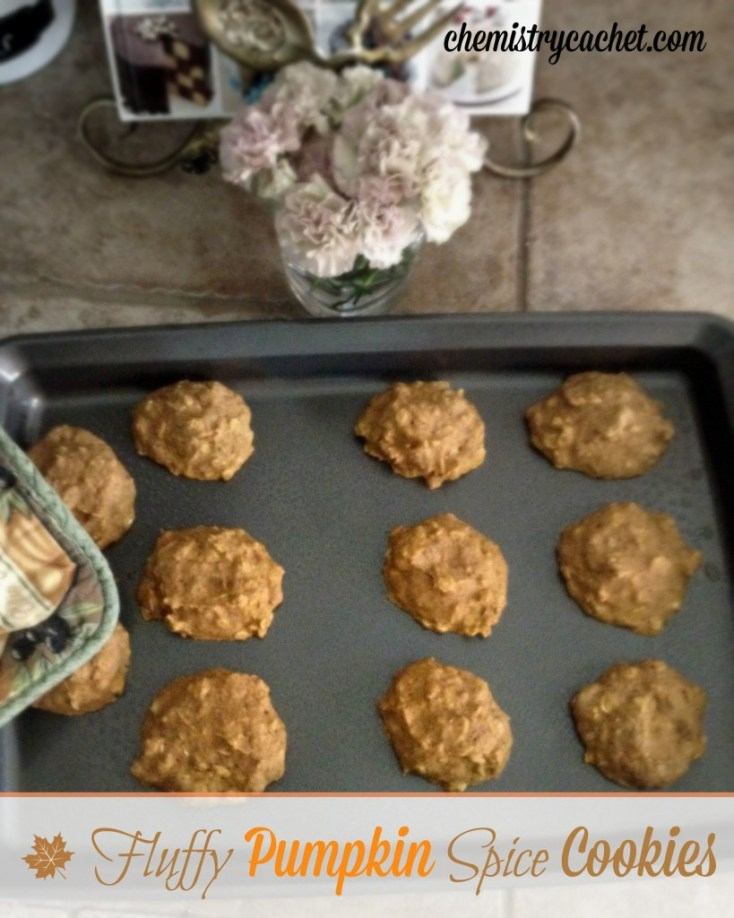 Fluffly pumpkin spice cookies, perfect anytime of day. Healthy & full of wonderful spice with a hint of pumpkin. chemistrycachet.com