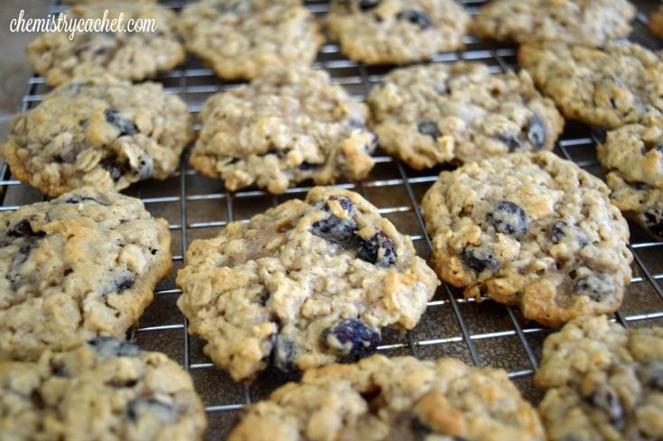 The BEST oatmeal raisin cranberry cookies plus chemist baking tips!