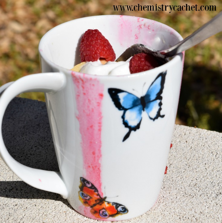 Light & refreshing raspberry muffin in a mug in under 2 minutes! Dairy-free with gluten-free option on chemistrycachet.com