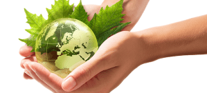 green globe and leaves in a person's hands