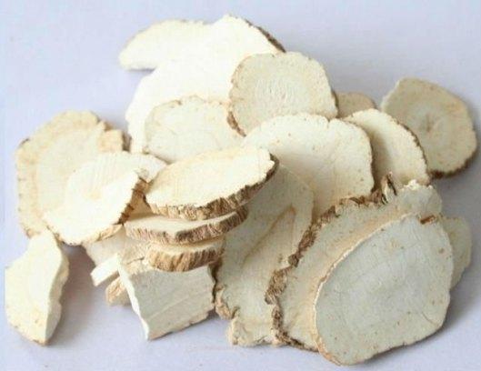 radix-angelicae-dahuricae-bai-zhi-%e7%99%bd%e8%8a%b71