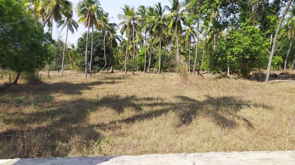 The Land for Sale