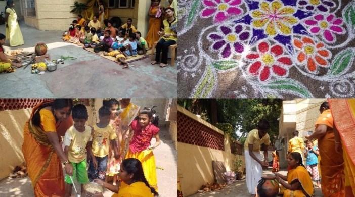Pongal O Pongal celebrations